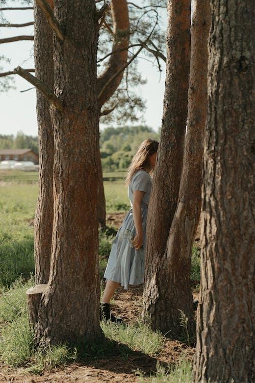 Woman in White Dress Standing Beside Brown Tree