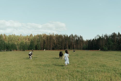 Man in White Long Sleeve Shirt and Black Pants Standing on Green Grass Field