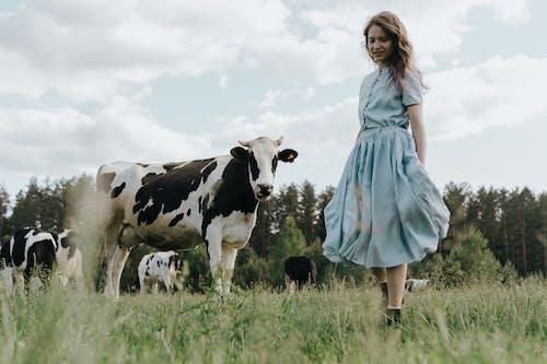 Woman in Blue Dress Standing Beside Cow on Green Grass Field
