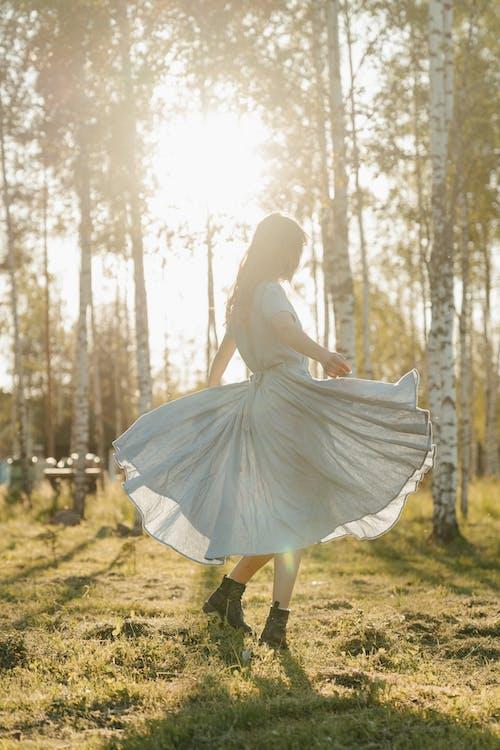 Безкоштовне стокове фото на тему «береза, вечірнє сонце, вродлива, вродливий»