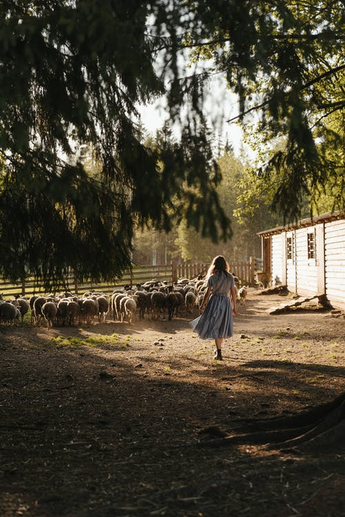 Woman in White and Purple Dress Walking on Dirt Road