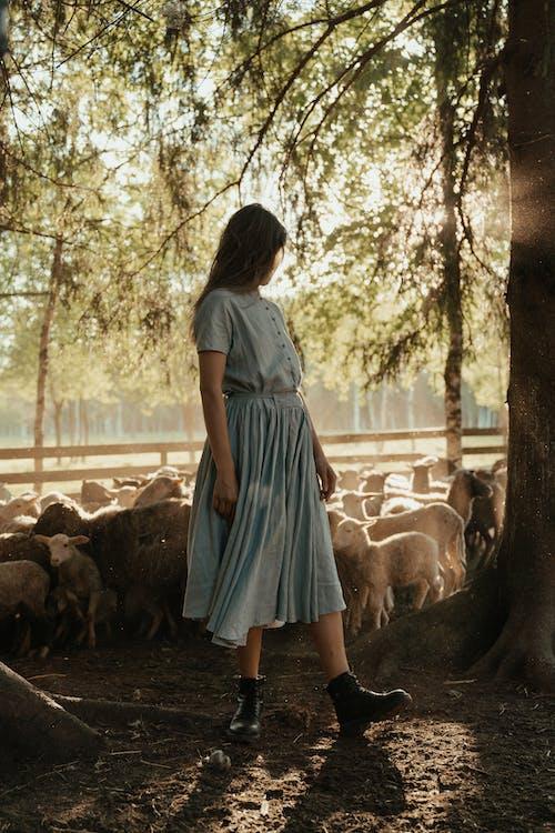 Girl in Blue Dress Standing Near Brown Horse
