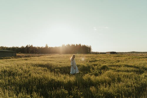 ドレス, ファーム, フィールドの無料の写真素材
