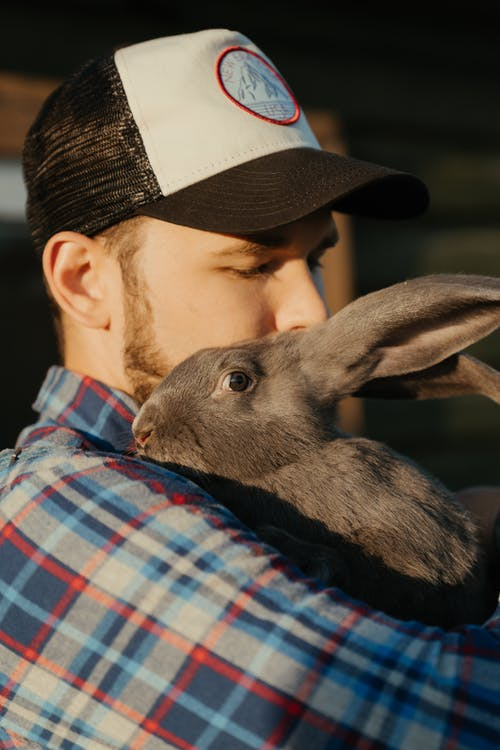 Man in Blue White and Black Plaid Shirt Holding Gray Rabbit