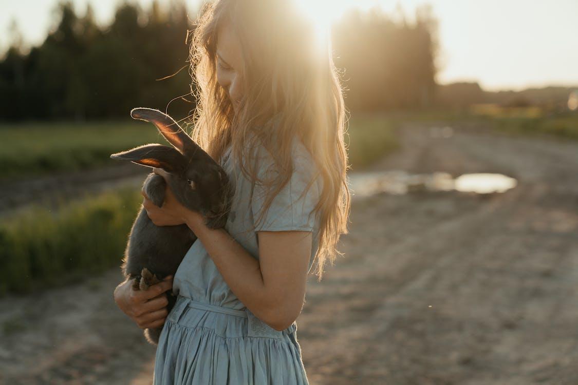 Бесплатное стоковое фото с алиса, вечернее солнце, волос