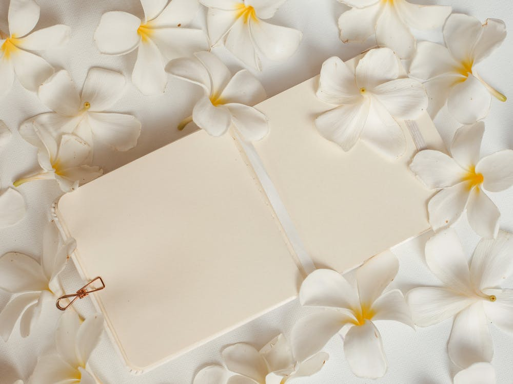 White and Gold Floral Box