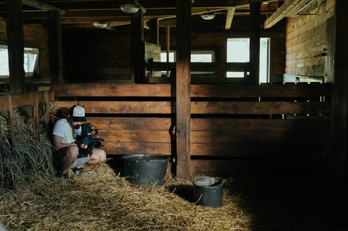 Бесплатное стоковое фото с cowbarn, в помещении, двор