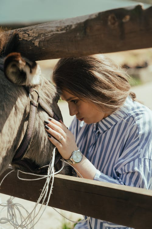 Fotobanka sbezplatnými fotkami na tému dedina, dievča, exteriéry, farma