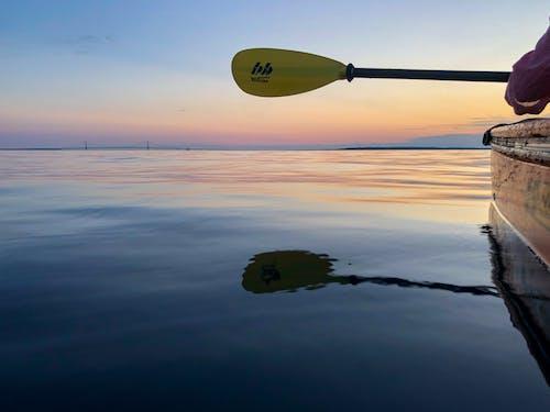 Free stock photo of golden sunset, kayaking, smooth water