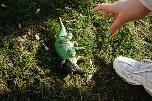 Faceless woman reaching hand to toy dinosaur on grass
