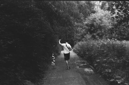 Anonymous man with dog walking in forest amidst lush vegetation