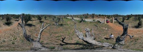 Gratis lagerfoto af drohne, Panorama, panoramablick