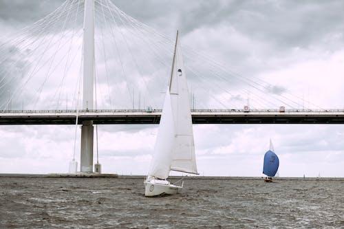 White Sailboat on Sea Near Bridge Under White Clouds
