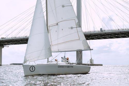 Weißes Segelboot Auf Seedock