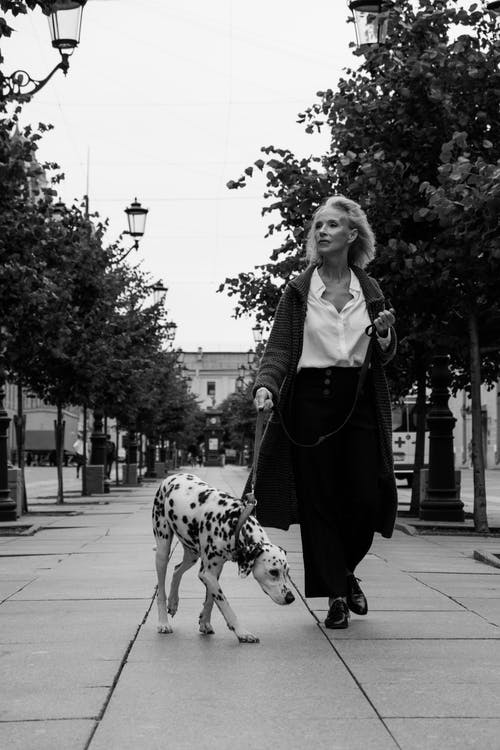 Woman in Black and White Dalmatian Dog Standing on Sidewalk