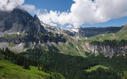 Immagine gratuita di alberi, alpi svizzere, bella vista