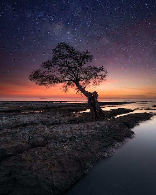 Foto stok gratis air, bayangan hitam, bima sakti