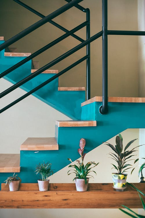 Various potted houseplant placed on shelf near wooden stairs