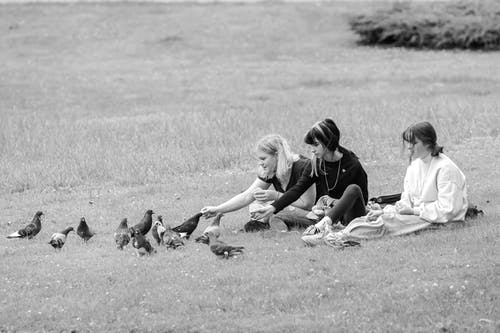 Content girlfriends resting on grassy lawn and feeding pigeons