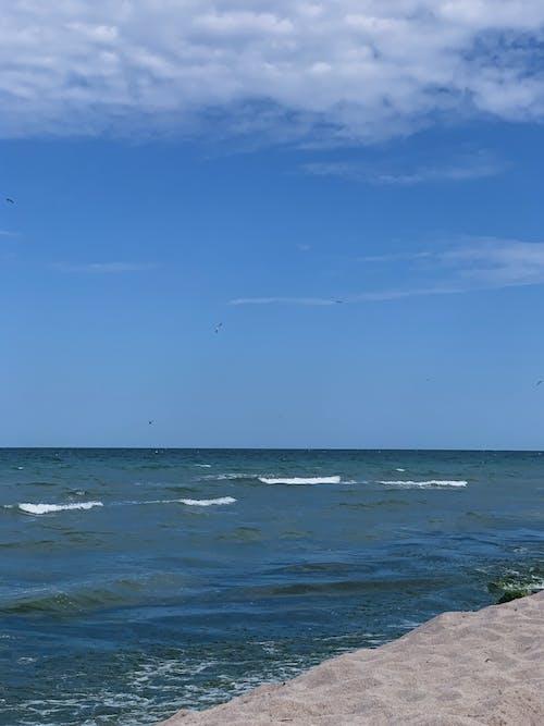 Photos gratuites de bord de l'eau, bord de mer, calme