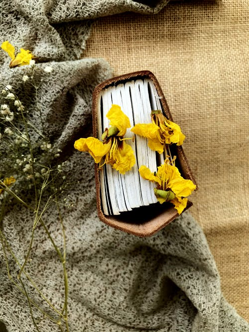 Yellow dried flowers placed on book near grey fabric