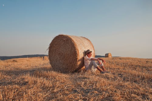 Woman in White Shirt Sitting on Brown Grass Field
