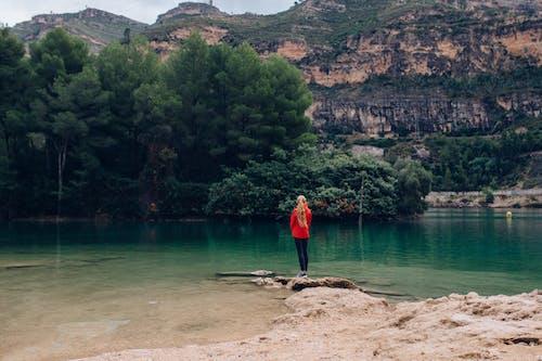 Fotos de stock gratuitas de a orillas del lago, agua, al aire libre