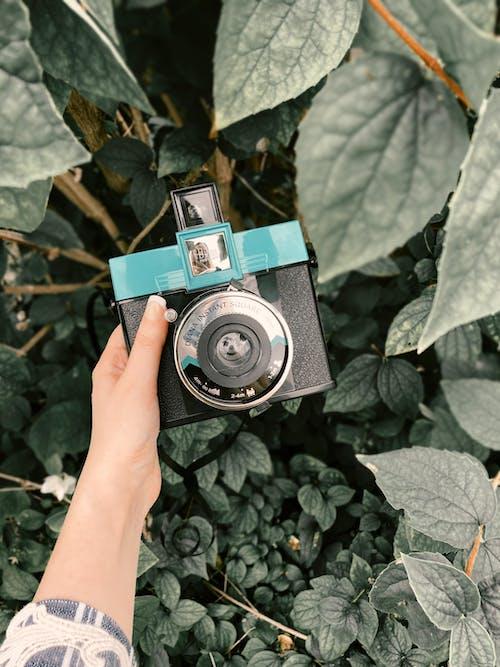 Faceless woman holding photo camera