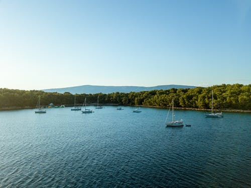 Fotos de stock gratuitas de agua, al aire libre, árbol, barca