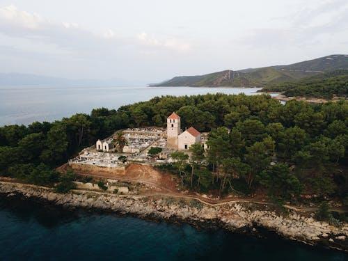 Fotos de stock gratuitas de agua, árbol, arquitectura, bahía