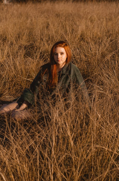가을, 감기, 겨울, 경치의 무료 스톡 사진