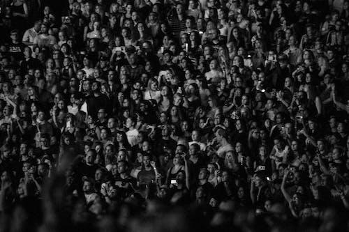 アダルト, おとこ, グループ, コンサートの無料の写真素材