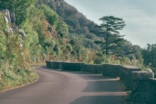 Narrow road in mountainous area