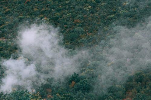 Gratis stockfoto met afgelegen, antenne, atmosfeer, bladeren