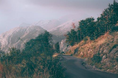 Narrow road in mountainous terrain