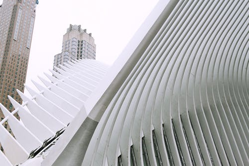 From below of contemporary construction of Oculus transportation hub located in downtown of NYC