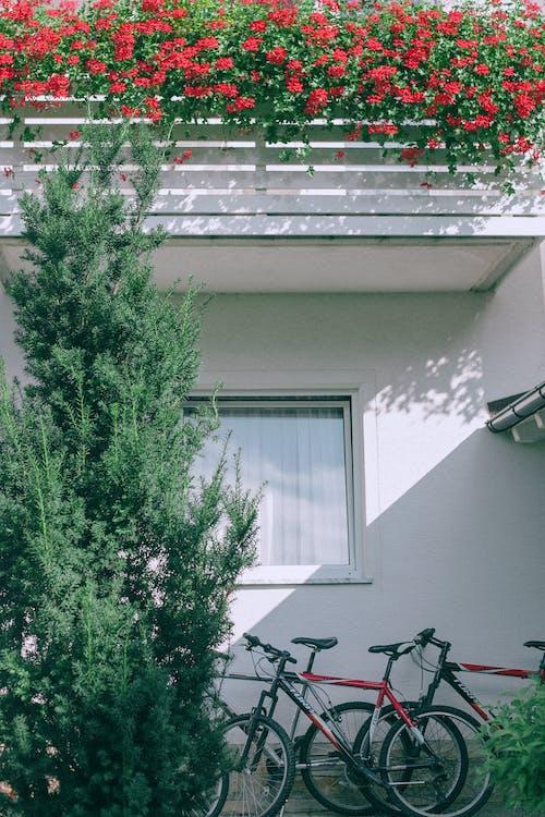 Бесплатное стоковое фото с архитектура, Балкон, безмятежный, велосипед