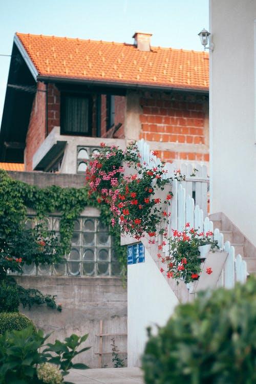 Бесплатное стоковое фото с архитектура, вертикальный, вилла, декорация