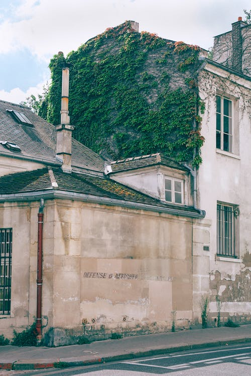 Old light beige stone buildings with ivy growing on wall in empty street in summer