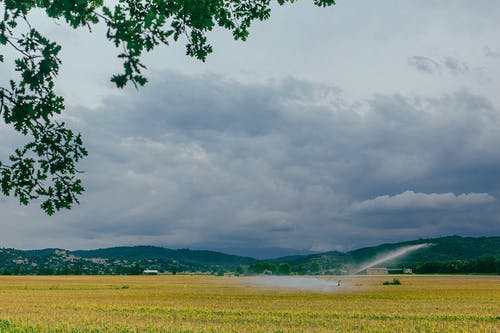 Picturesque scenery of yellow field sprinkling with water of irrigation system mountains and cloudy sky in summer day