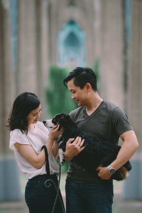 Smiling Asian couple caressing purebred dog on city street
