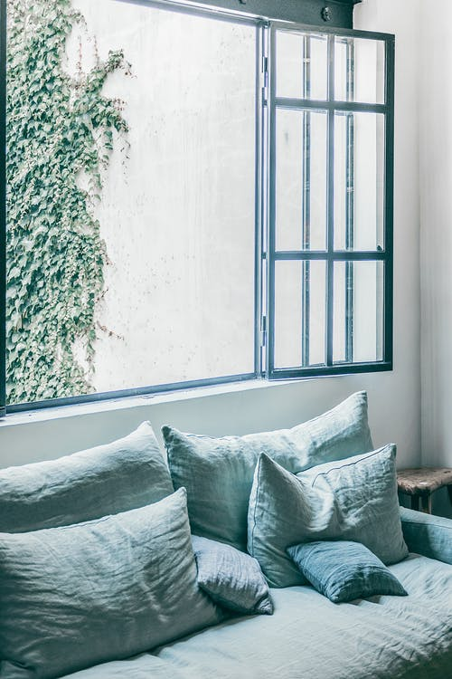 Comfortable blue couch with cushions placed near big opened window against white street wall with climbing plant in cozy white room