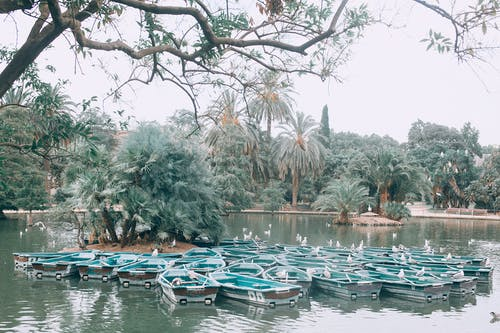Boats on calm lake in tropical terrain
