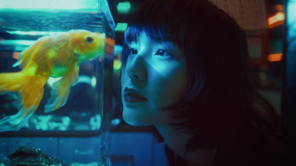 Side view of curious Asian female looking at goldfish swimming in aquarium in dark room