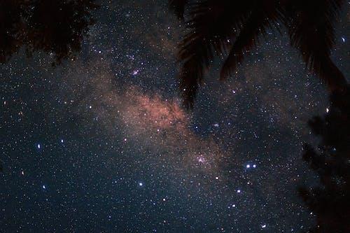 Free stock photo of at night, bright stars, constellation