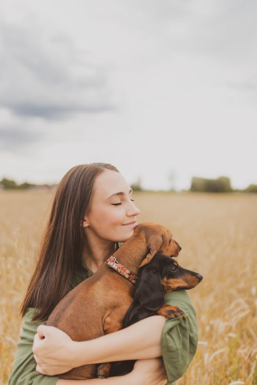 Delighted young woman stroking purebred dogs in countryside