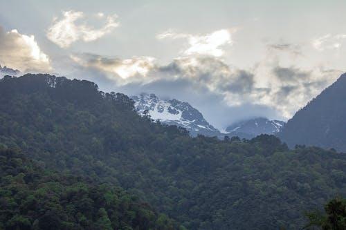Free stock photo of eastern himalayas, himalayas, landscape