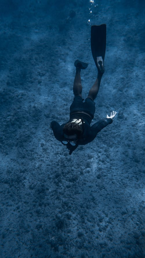 From below of unrecognizable diver in oxygen mask and flippers swimming underwater along bottom covered with vegetation in clear ocean