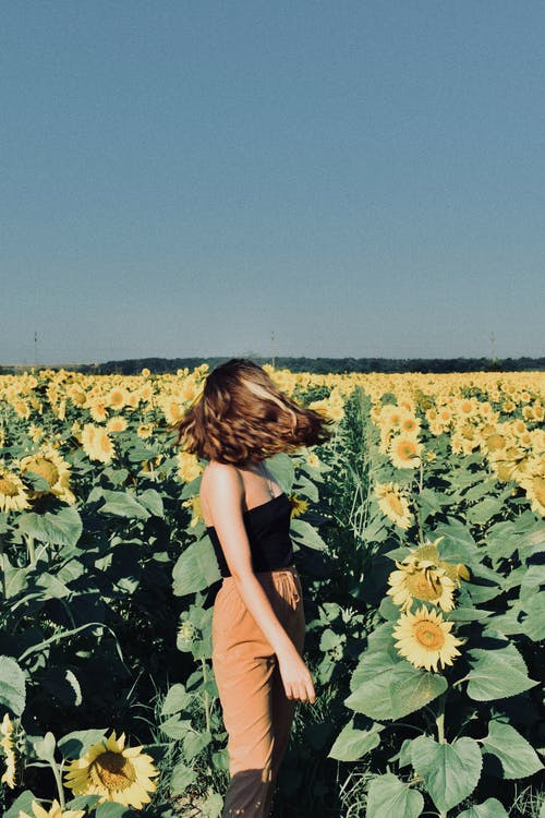 Side view of young female in casual clothes standing and turning head in field with sunflowers in sunny day