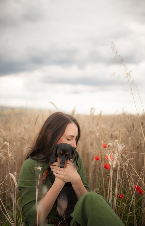 Tranquil young female hugging Dachshund dog in rural field
